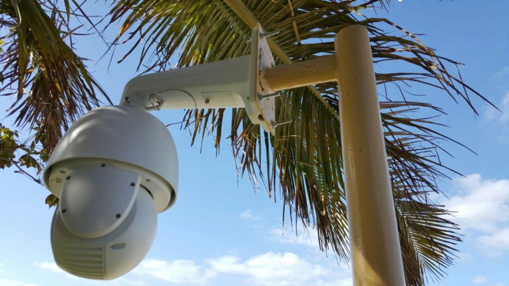 Prolynx Monitoring